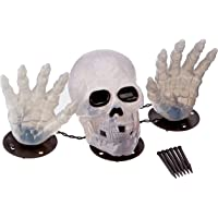 WM 2' Skull with Hand Lighted Set