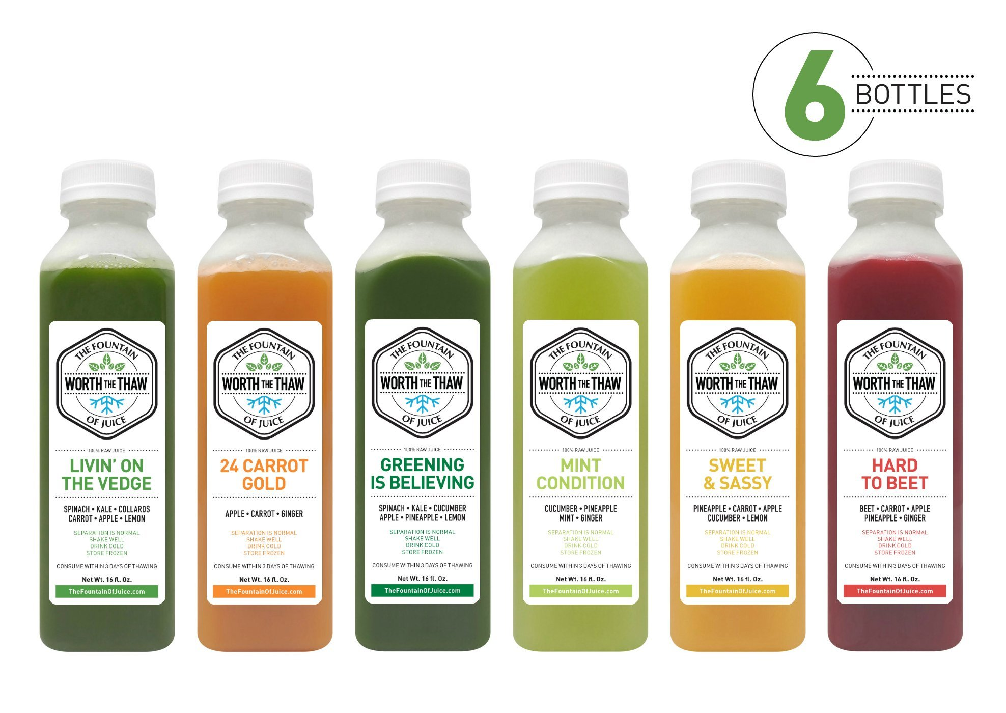 Amazon juice cleanse 2 day organic cold pressed juice and the fountain of juice 100 raw juice classic cleanse cold pressed no malvernweather Gallery