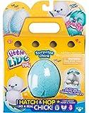 Little Live Pets 28427 Surprise Chick Figure-Assorted items