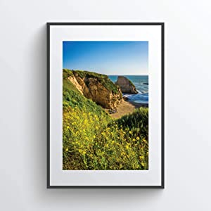 rfy9u7 Yellow Flowers and View of Shark Fin Cove in Davenport California| Photo Print Metal Framed Black Wood Frame for Wall and Tabletop