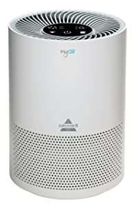 Best 3 Bissell Air Purifier Reviews of 2021 3