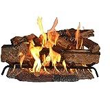 Sure Heat CS30DBNG Sure Heat Country Split Oak Dual Burner Vented Gas Log Set, 30-Inch, Natural Gas