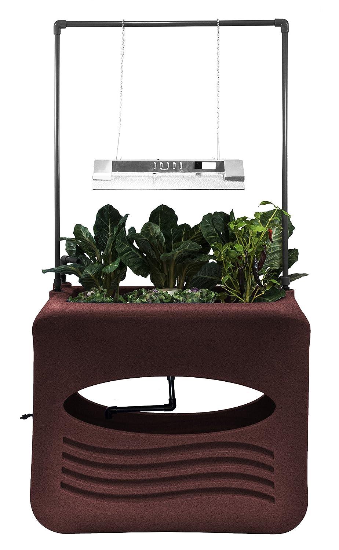 Amazon.com: good Ideas aqua-dar Aspen Aqua Grow Aquaponics ...