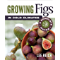Growing Figs in Cold Climates: A Complete Guide