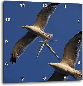 3dRose Close up Photograph of a Two Seagulls in Flight - Wall Clocks (DPP_335810_2)