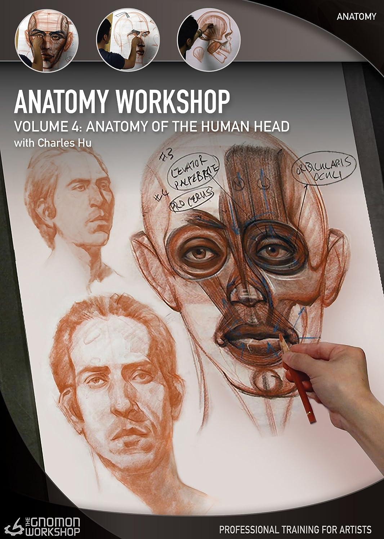 Anatomy Workshop Volume Four - Anatomy of the Human Head with ...