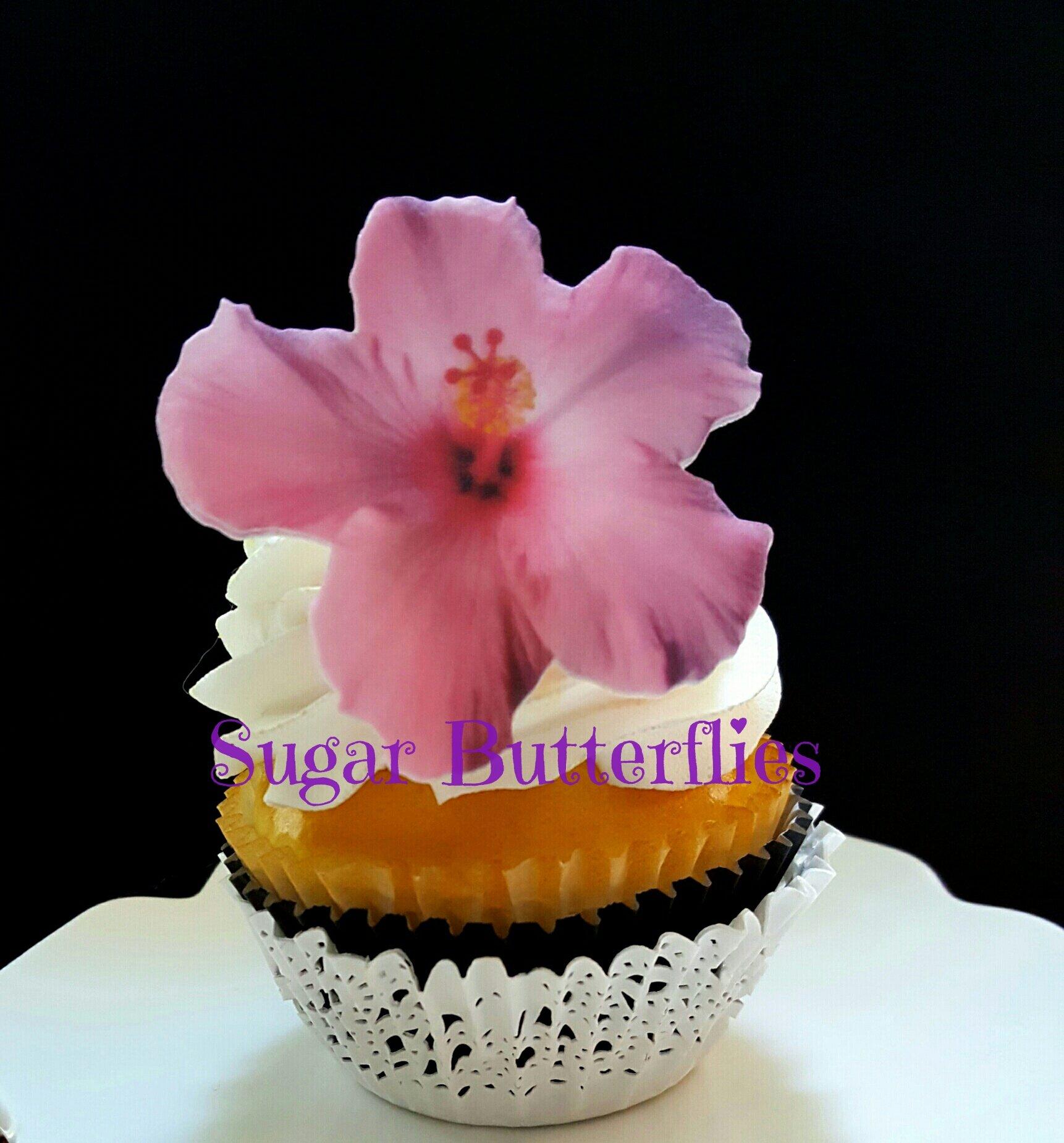 Sugar Pansies For Cake Amazon