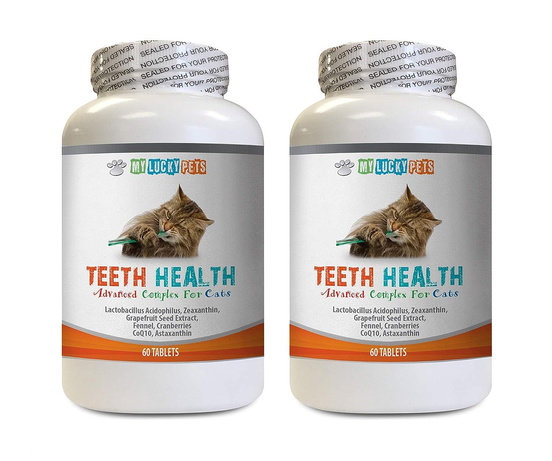 Amazon com : MY LUCKY PETS LLC cat Gum Treatment - CAT Teeth