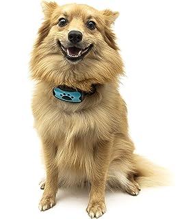 save off 91826 c5446 Dog Anti Bark Collar by TopDog, No Bark Collar, NO SHOCK, Harmless and  Humane, Training and…