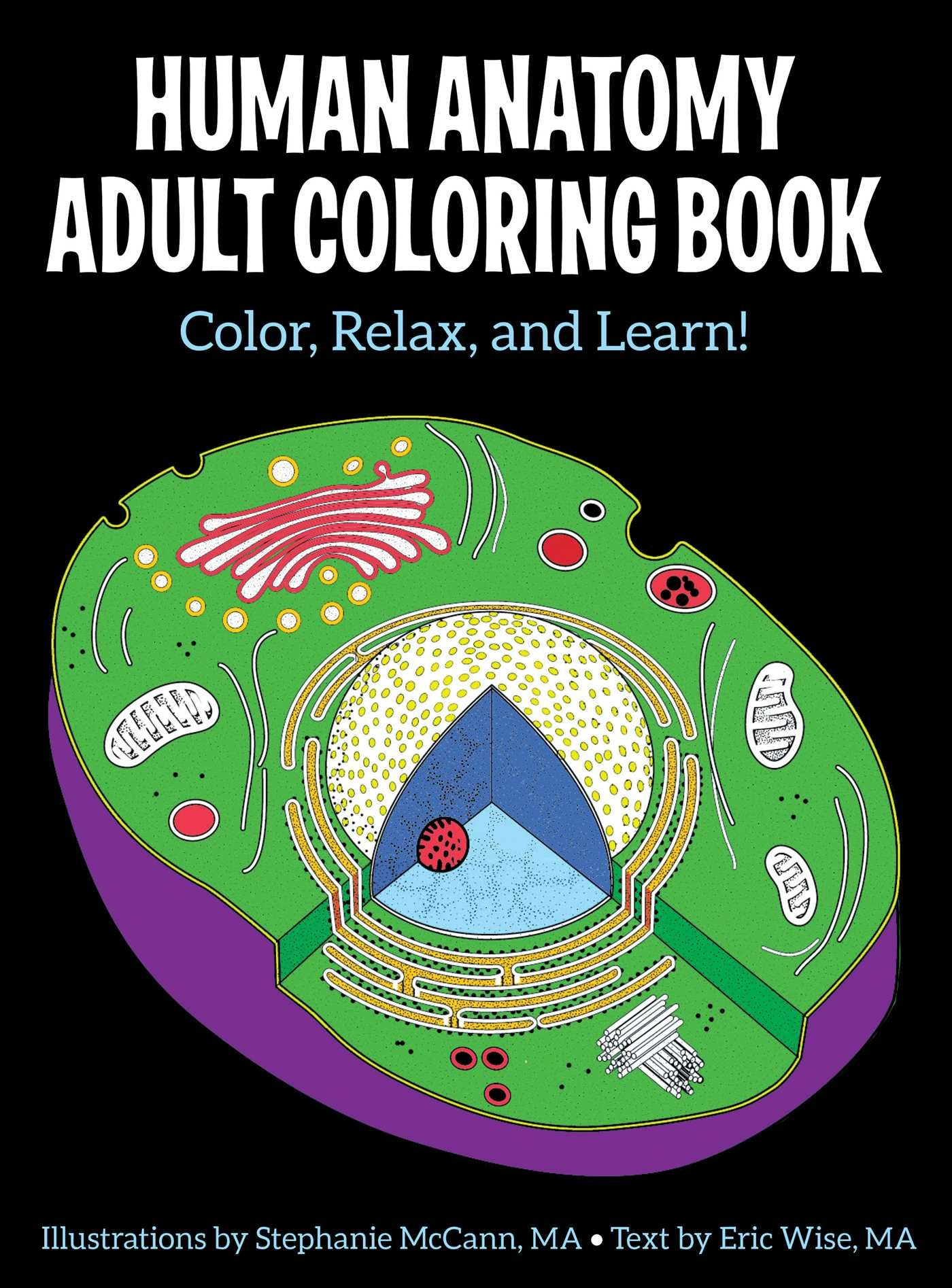 Amazon Human Anatomy Adult Coloring Book 9781506225586 Stephanie McCann Eric Wise Books