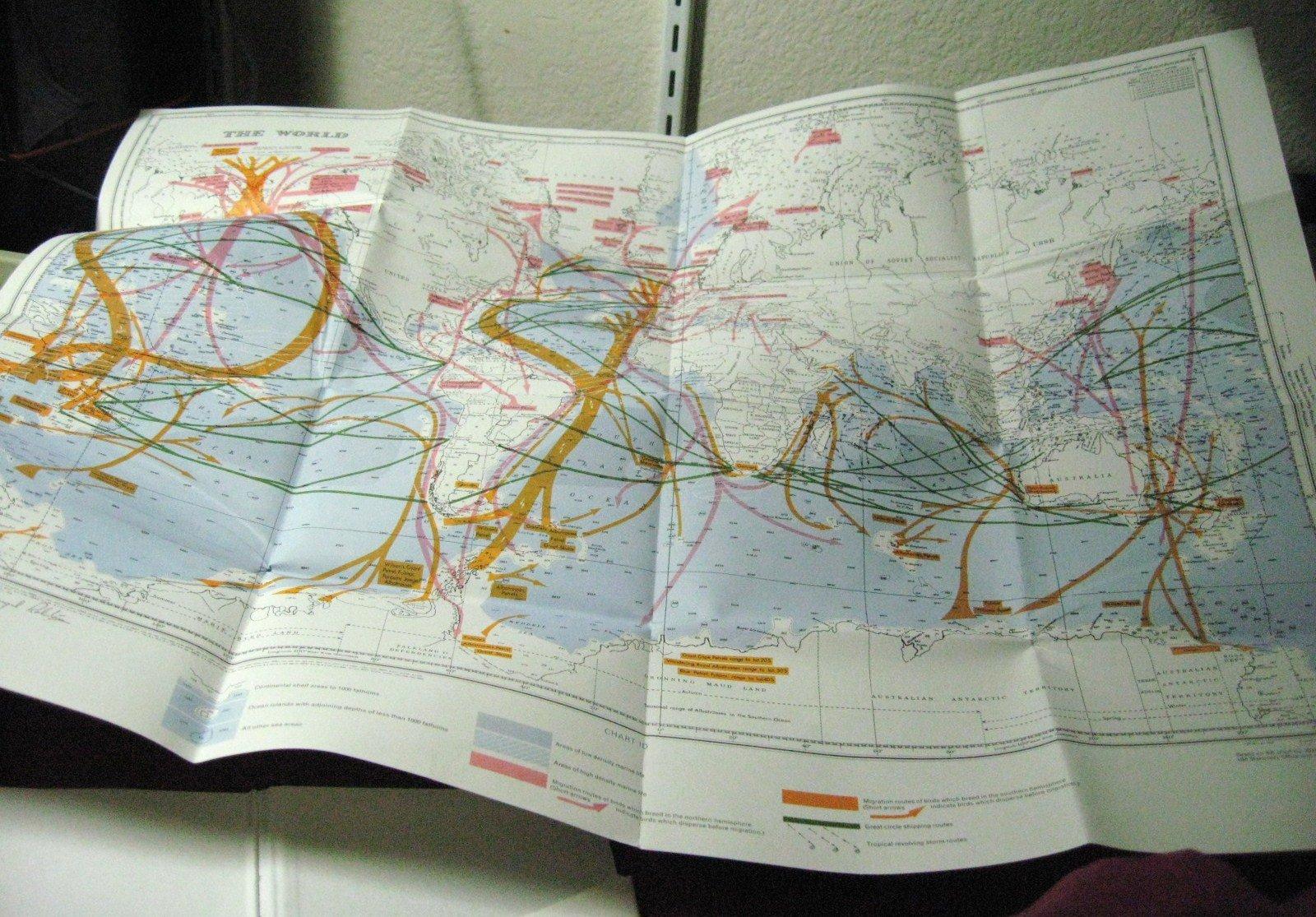 Sea Survival: A Manual