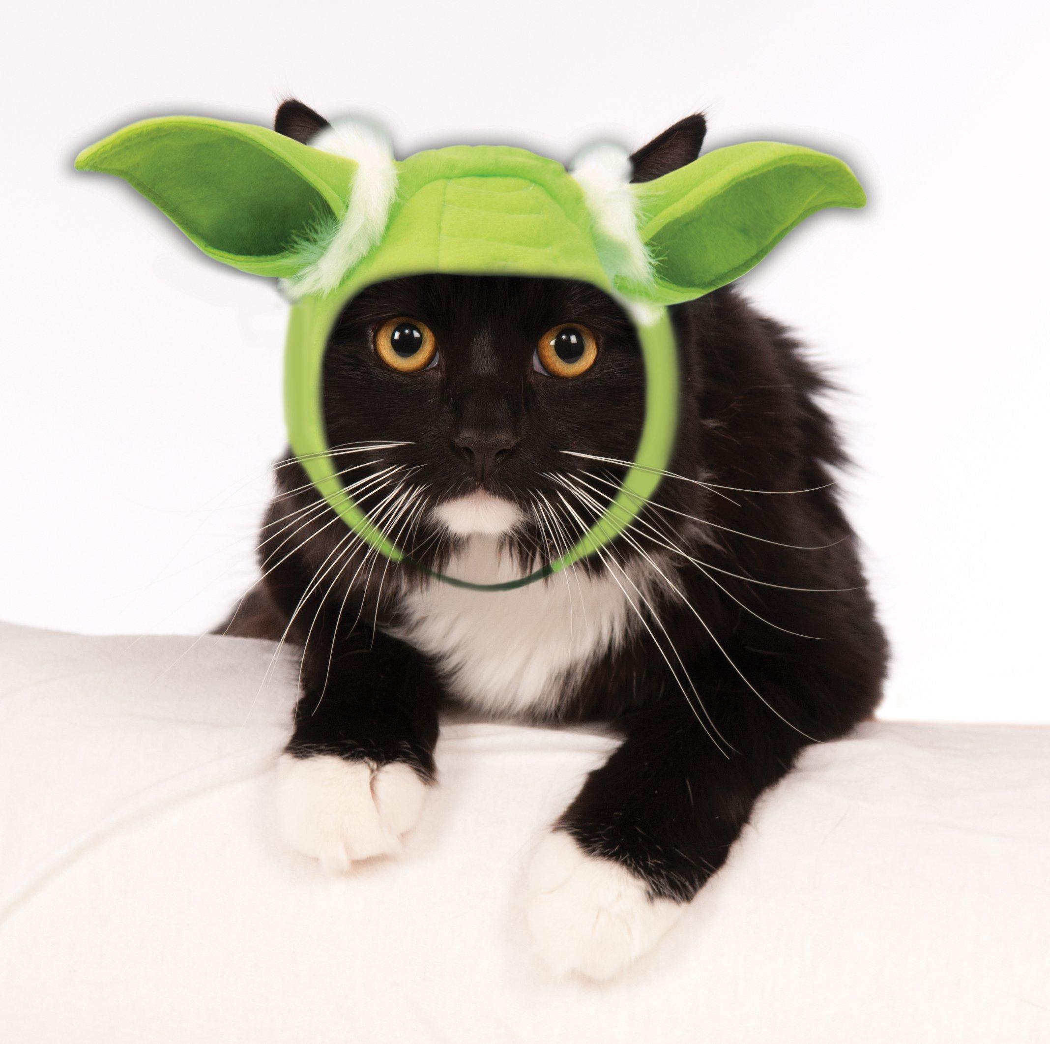 Star Wars Pet Cat Yoda Ears