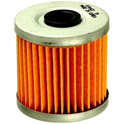 FRAM CH6070 Oil Filter for Motorcycles: Automotive