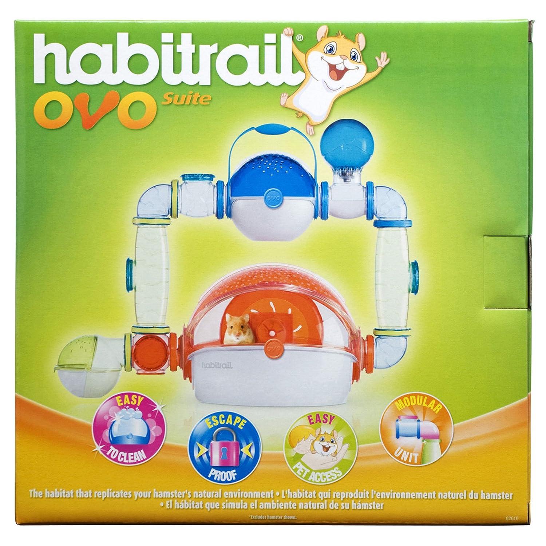 Habitrail Ovo - Jaula para hámster: Amazon.es: Productos para mascotas