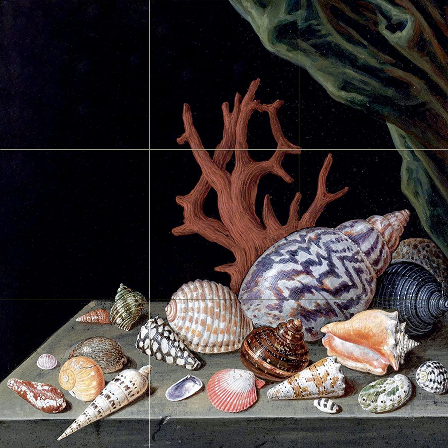 Still Life With Shells Coral Accent Tile Mural Kitchen