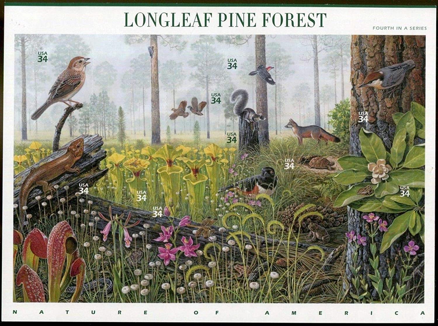 Longleaf Pine Forest (Nature of America) Full Sheet of Ten 34 Cent Postage Stamps Scott 3611