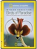 Winged Seduction: Bird / Paradise