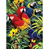 Royal Brush Various Junior Small Paint By Number Kit 8.75-inch x 11.75-inch, Majestic Macaws