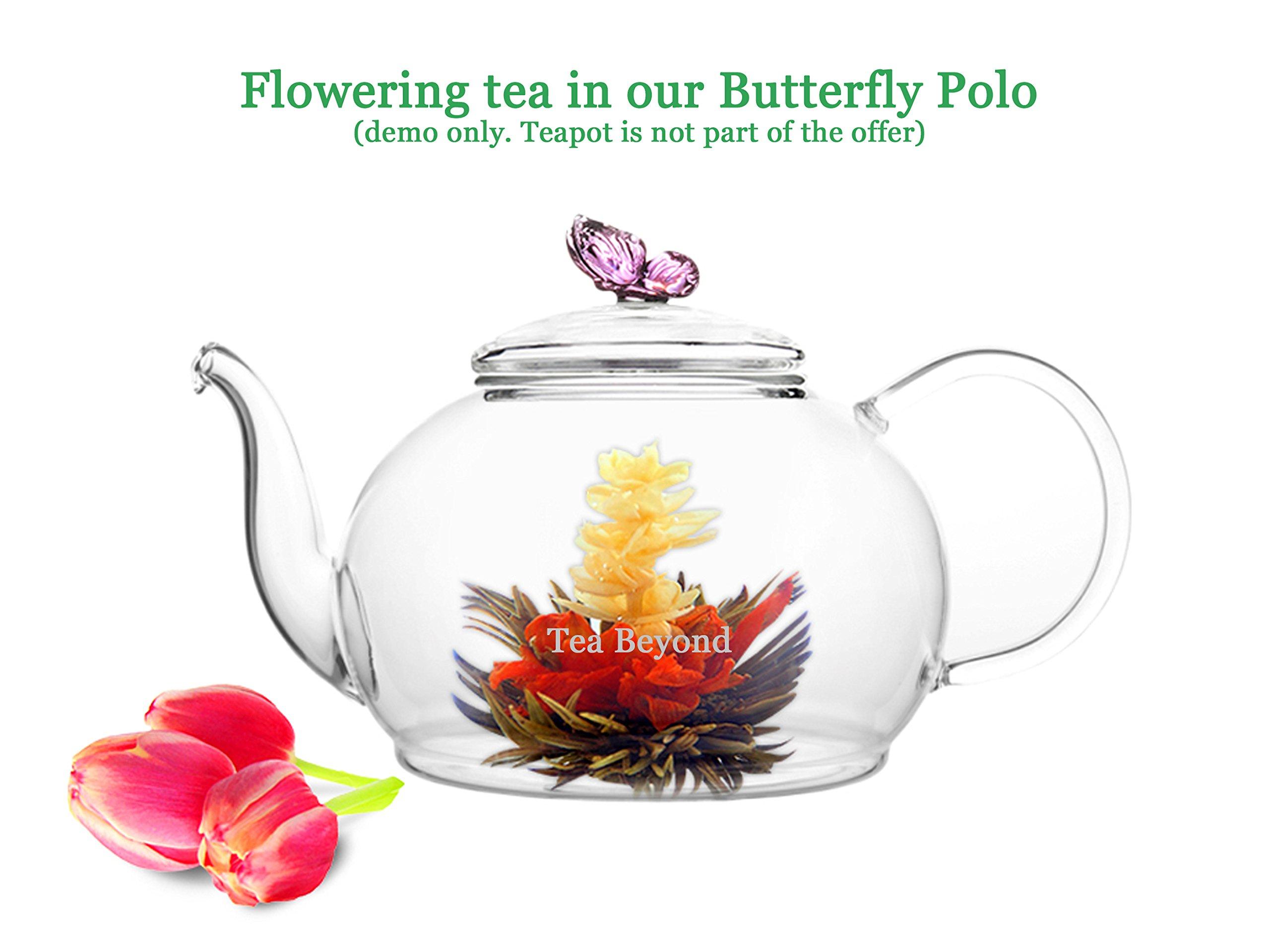 Tea Beyond Black Tea Gift set Iced Or Hot English Breakfast Flowering Tea 12 Packs Black Tea Blooming Tea Assorted Black Tea NON GMO Vegan Friendly 100% Natural No Artificial or Natural Flavors added