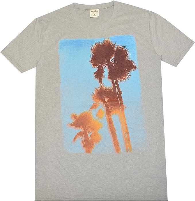 Hollister - Camiseta para Hombre, diseño de Palmera, Talla XL, Color Gris Jaspeado, Azul Cielo, carmín pálido: Amazon.es: Ropa y accesorios
