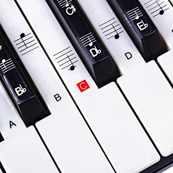amazon com stickers for piano keyboard music note full set rh amazon com Electric Keyboard Target Types of Electric Keyboards