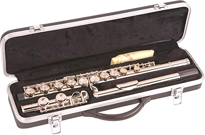 Odyssey OFL100 - Flauta travesera: Amazon.es: Instrumentos musicales