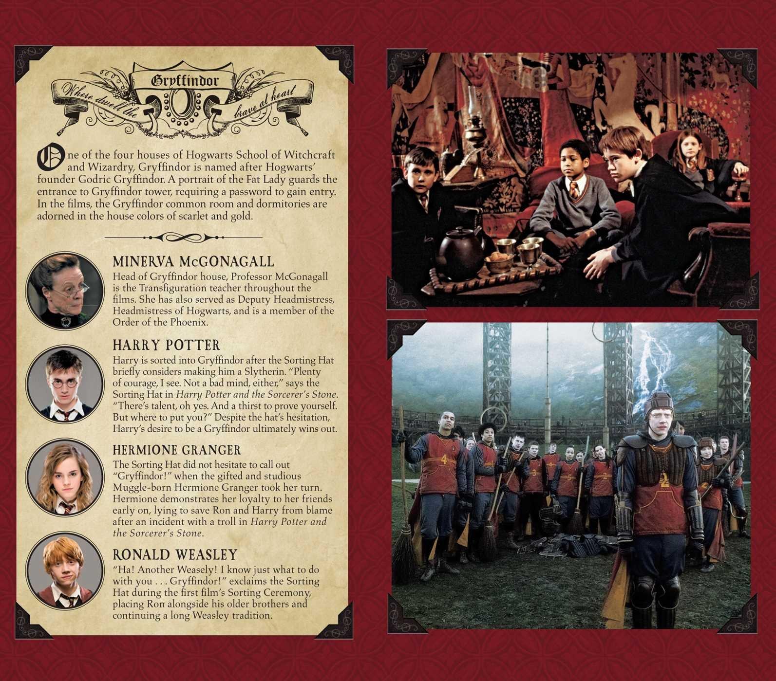 Harry Potter: Gryffindor Ruled Pocket Journal (Insights ...