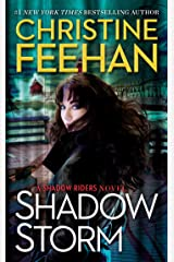 Shadow Storm (A Shadow Riders Novel Book 6) Kindle Edition