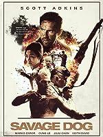 Amazon.com: Watch Ninja 2 Shadow Of A Tear | Prime Video