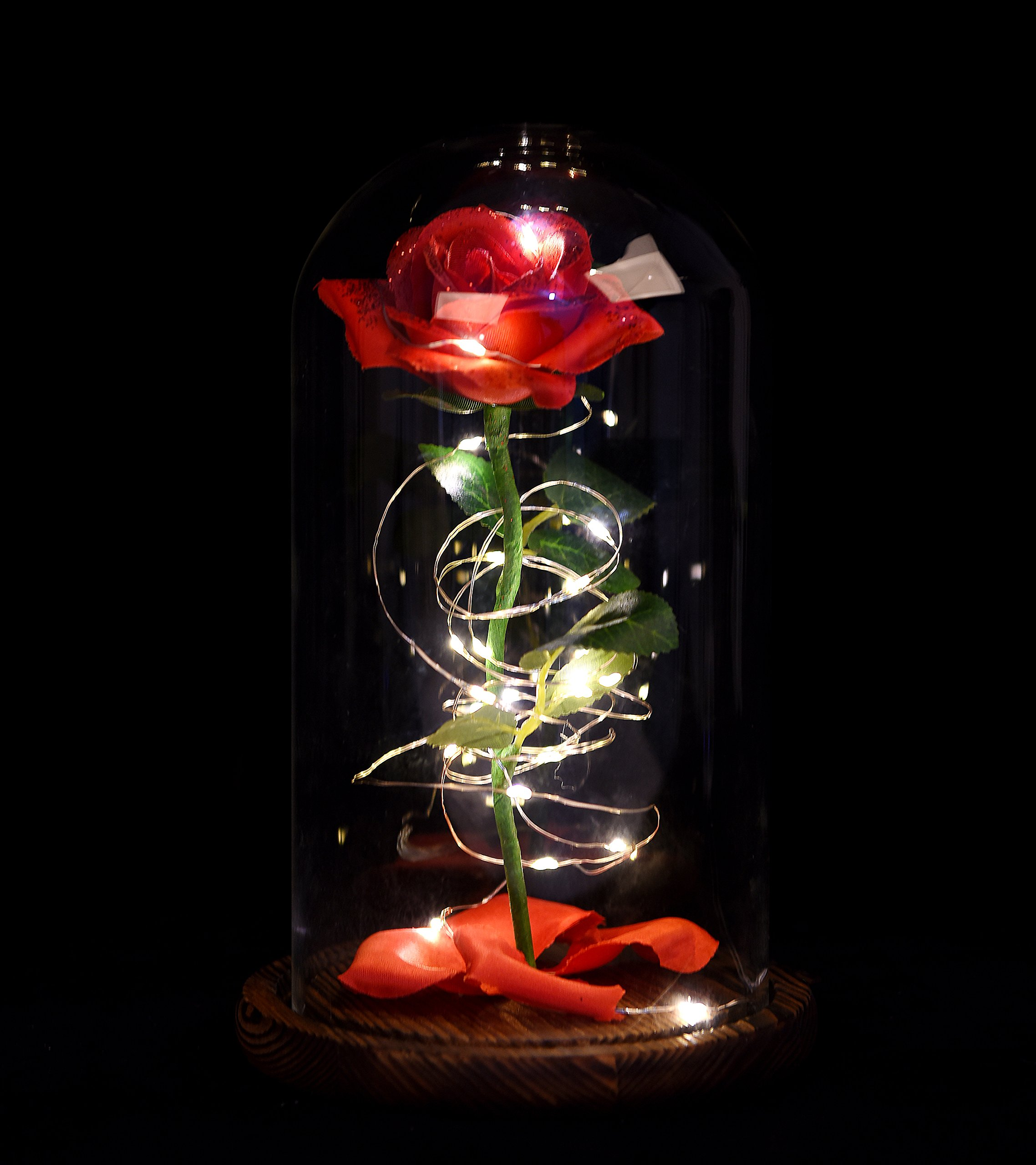 silk flower arrangements snowkingdom beauty the beast red rose in glass dome flower led lamp night light with fallen petals on a wooden base size 9x6 inch