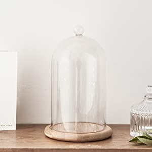 """Lights4fun, Inc. Glass Cloche Bell Jar Display Dome with Bamboo Base - 8"""" x 4"""""""
