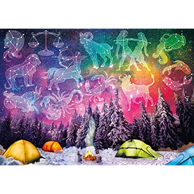 Buffalo Games - Vivid Collection - Written in The Stars - 300 Large Piece Jigsaw Puzzle: Toys & Games