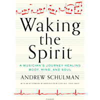 Waking the Spirit: A Musician's Journey Healing Body, Mind, and Soul book cover