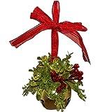 Ganz Kissing Krystals Mistletoe Bell Christmas Hanging Home Decor (Gold)