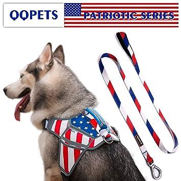 Amazon.com: QQPETS Juego de arnés para perro, chaleco ...