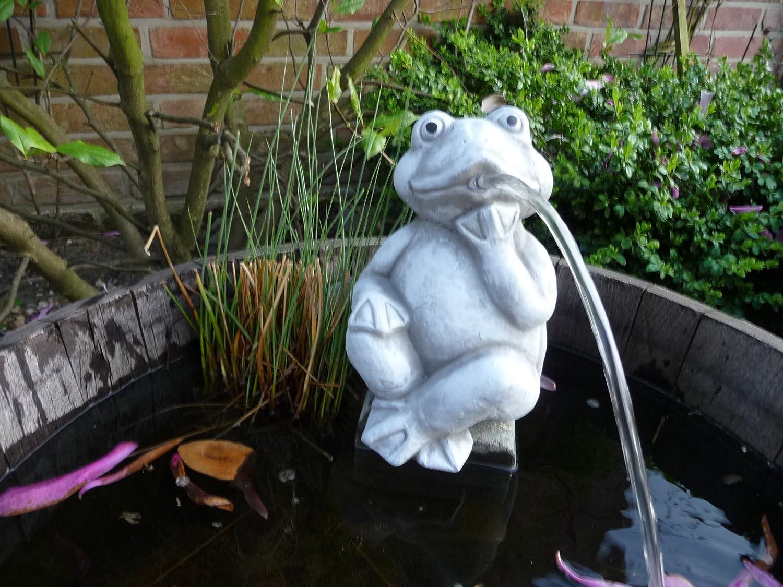 Small Frog Gargoyle Home Ornament