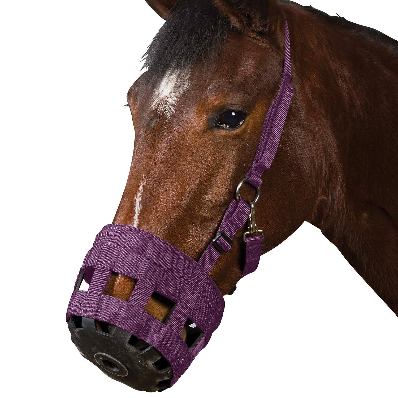 Roma Pony/Horse Grazing Muzzle - Purple Weatherbeeta