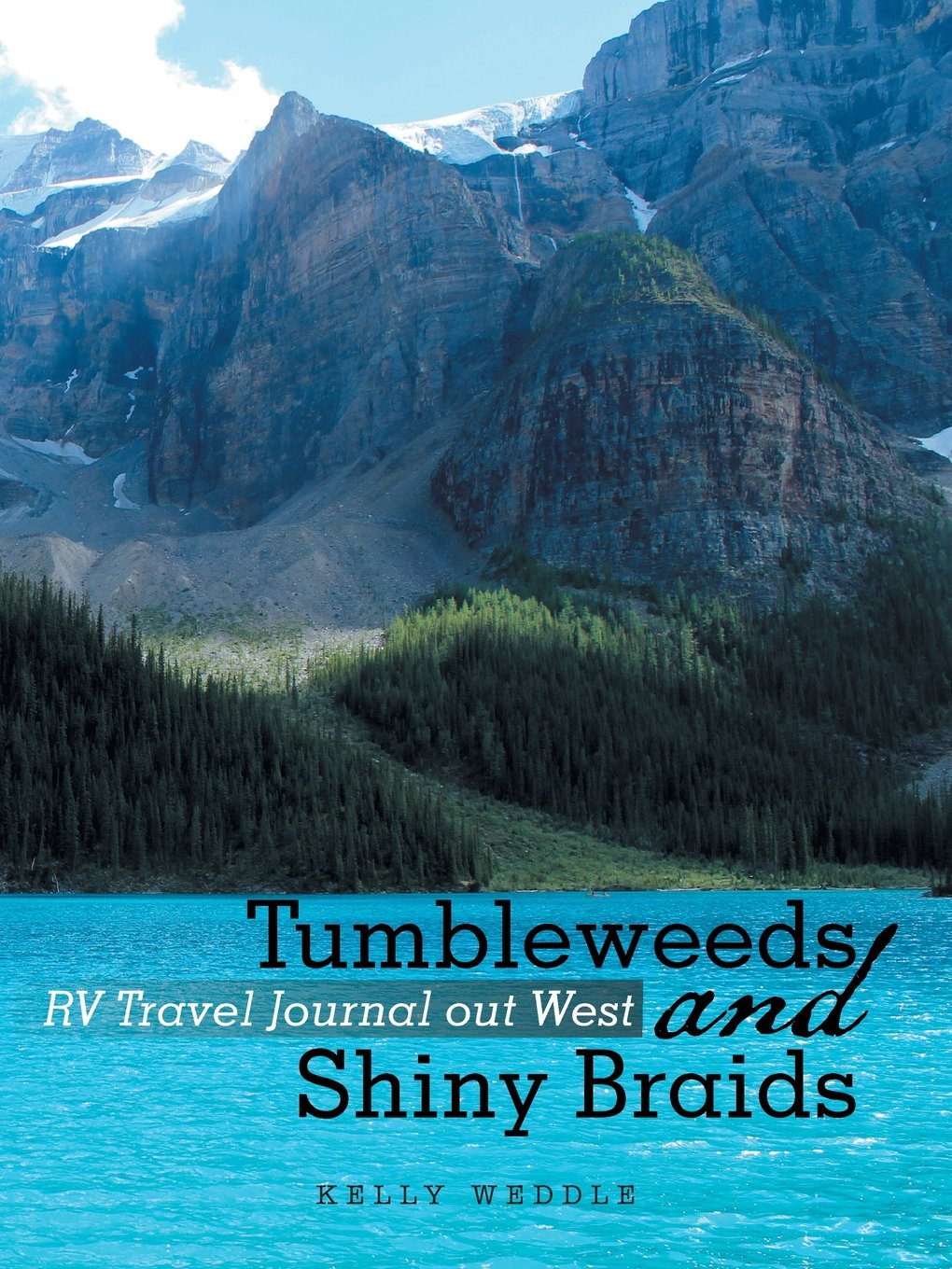 Tumbleweeds and Shiny Braids: RV Travel Journal out West PDF