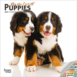 Puppies Calendar 2021 Bundle - Deluxe 2021 Puppies Mini Calendar with Over 100 Calendar Stickers (Puppy Gifts, Office Supplies)
