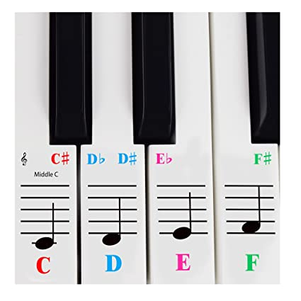 23a614e9f11 Amazon.com  Piano Sticker for 61 Key Keyboards – Transparent and Removable  with Free Piano Ebook-Made in USA  Musical Instruments