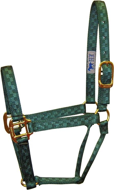 Dark Green Checkerboard Average Hamilton 1 Nylon Quality Halter for 800 to 1100 lb Horse