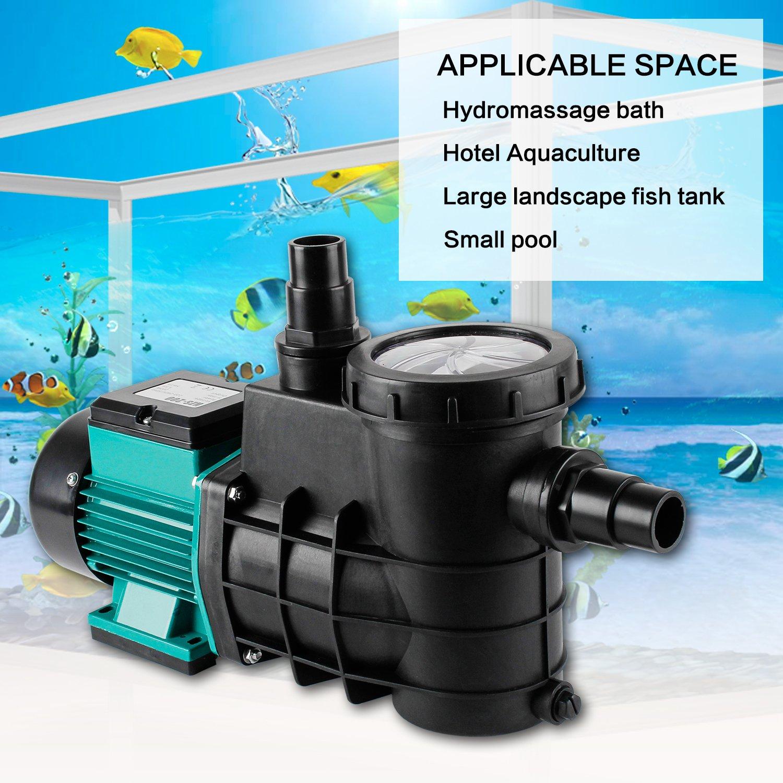 EverBest4U 230V Bomba de filtro Bomba para piscina Bomba 5000L/H IPX4, Verde: Amazon.es: Jardín