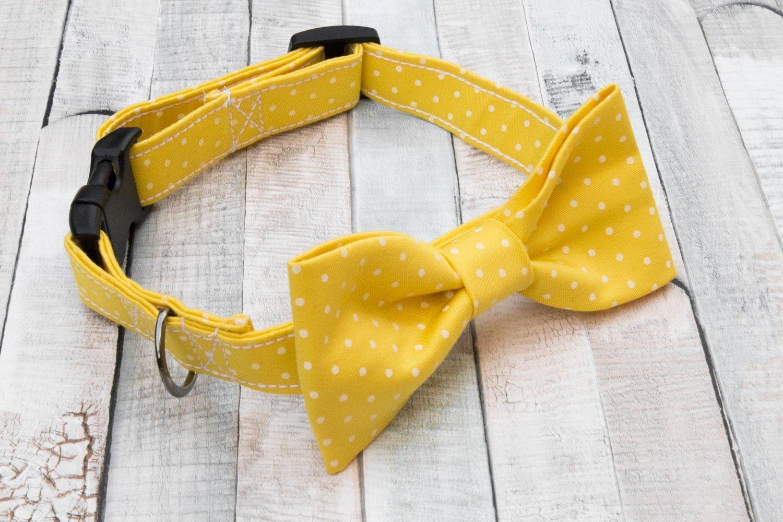 Collare per cani con Papillon a pois, giallo limone