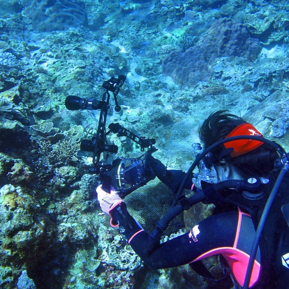 HUIFANGBU 8 inch 20.3cm Aluminum Alloy Ball Arm for Underwater Torch//Video Light Ball Diameter 2.5cm