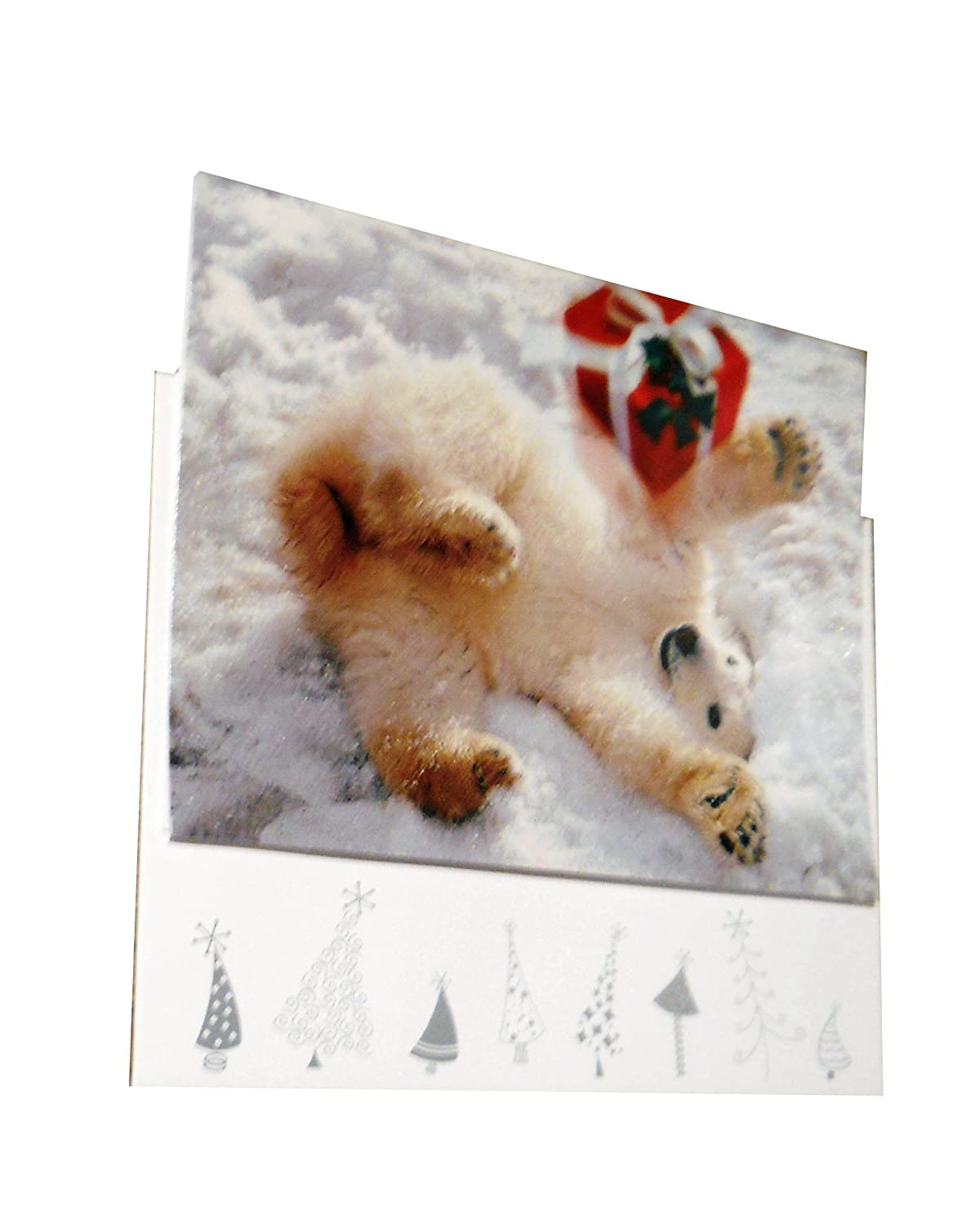 Amazon.com : Avanti Christmas Cards, Cats and Cookies, 10-Count ...
