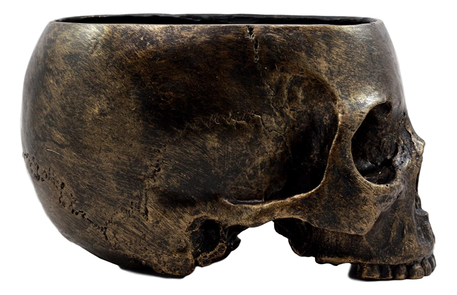 Ebros Gift Bronzed Day of The Dead Skull Bowl Figurine 7 Long Skeleton Head Gardening Planter Sculptural Vessel Treat Container Decorative Bowl