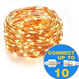 Amazon Price History for:Homestarry Connectable String lights 100 LEDs 33 ft Copper Wire Lights for Indoor ,Outdoor, Christmas Decorative Lights,Patio for Seasonal Holiday ,Warm White, Connect up to max of 10 Strands