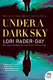 Under a Dark Sky: A Novel