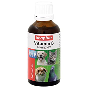 Beaphar - Complejo de vitamina B - 50ml: Amazon.es: Productos para mascotas