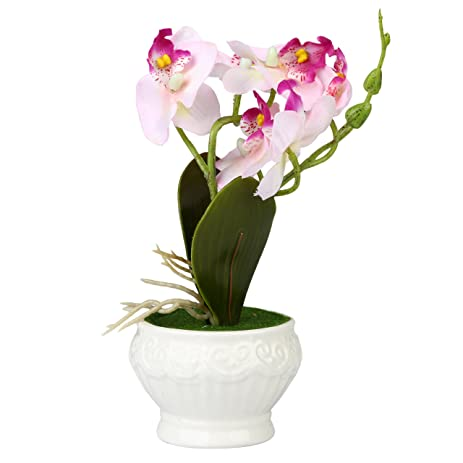 Amazon Artificial Silk Phalaenopsis Orchid Flower Arrangement W